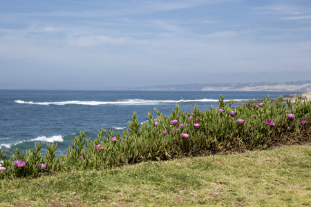 Beautiful La Jolla Beach in San Diego, California
