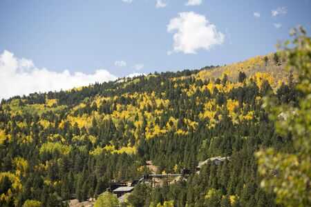 Colorado mountain covered with colorful aspen trees in fall