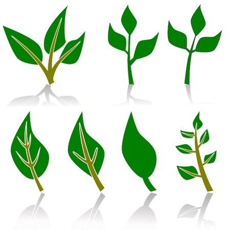 recycle symbol vector: leaf or plant ecology or environment sign