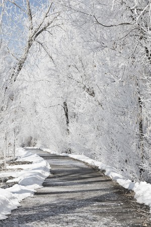 winters: A frozen, icy pathway covered in snow on a winters day