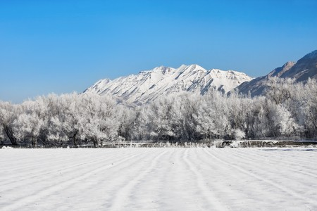 wintery: Frost and snow covers a wintery mountain landscape