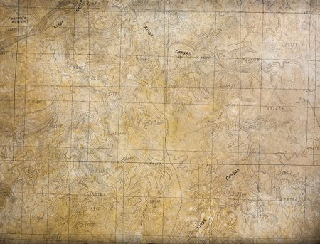 expedition: A large topographical map. Perfect expedition and travel background