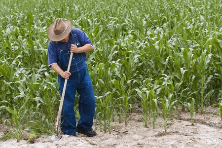 Farmer working on his farm Banque d'images