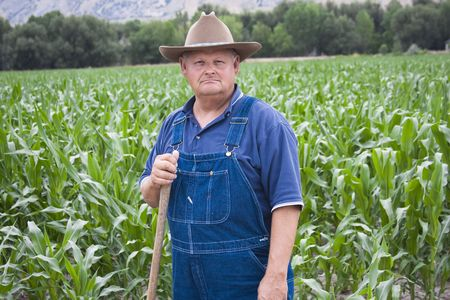 Old Farmer working in his fields  photo