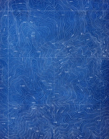 Topographical Blueprint Pattern