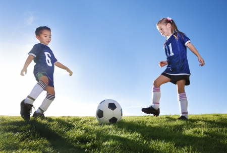 soccer ball on grass: Young Soccer Players on a team