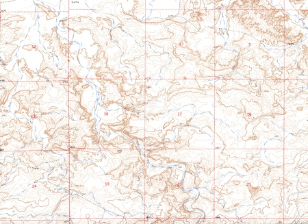 expeditions: Authentic Topographical Map Background