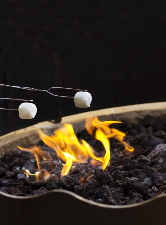 Roasting Marshmallows over the fire at night photo