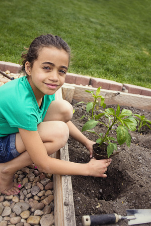 Young Girl Planting a new Plant photo