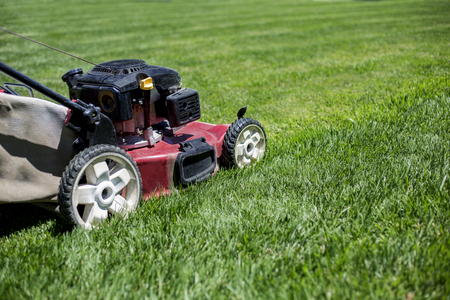 Mowing the lawn outdoors with perfectly healthy grass Stock fotó