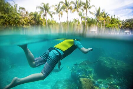 Underwater photo of Child snorkeling at a tropical resort. View from above and below the water level with stingrays swimming under the snorkeler Stock fotó