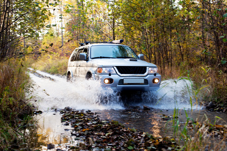 Herbstfahrt im Wald auf 4WD Fahrzeug Standard-Bild - 29171901