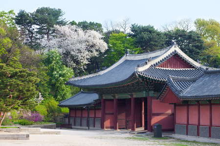 wide angle lens: Korean style houses in Changdeokgung Palace in Seoul, Korea. Photo taken with wide angle lens
