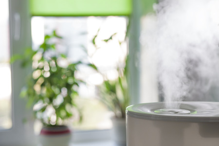 Vapor from humidifier in the morning light in a living room Фото со стока - 63820873