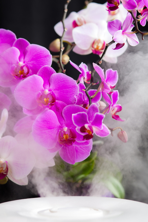Vapor from humidifier and orchid flowers on the background 免版税图像