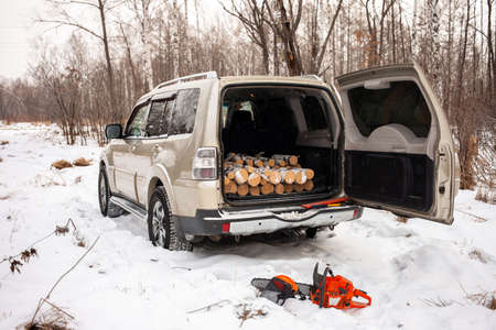 Khabarovsk, Russia - January 7, 2021: Mitsubishi Pajero/Montero in winter forest with firewood in the trunk.