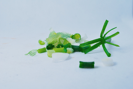 freshScallion on a white background