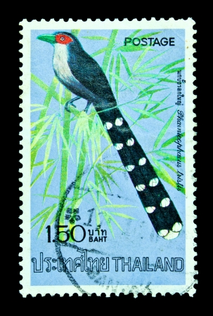 THAILAND - CIRCA APRIL 1975: A postage stamp printed in Thailand shows image of Thai bird with the inscription Terpsiphone Paradise, from the series Thai birds, 2nd Series, circa April 2, 1975
