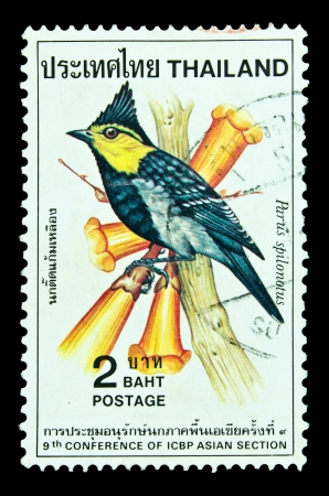 ged: THAILAND - CIRCA 1985 : A postage printed in Thailand shows image of Thai bird with the inscription Parus Spilonotus, from 9th Conference of CBP Asian Section, CIRCA 1985