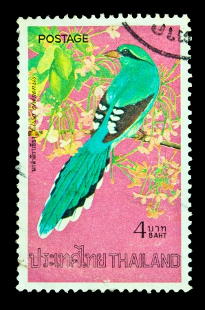 postal card: THAILAND - CIRCA APRIL 1975: A postage stamp printed in Thailand shows image of Thai bird with the inscription Terpsiphone Paradise, from the series Thai birds, 2nd Series, circa April 2, 1975