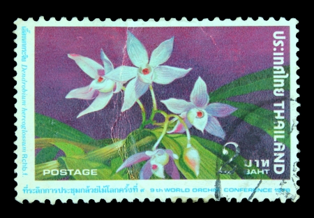 philatelic: THAILAND - CIRCA 1978  A stamp printed in Thailand shows 9th World Orchid Conference, circa 1978