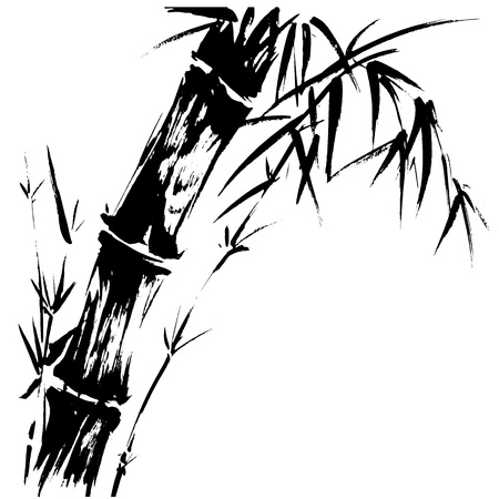 bamboo plant: Hand drawn illustration of a bamboo black silhouette against a white background