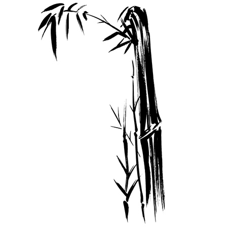 bamboo frame: Hand drawn illustration of a bamboo black silhouette against a white background