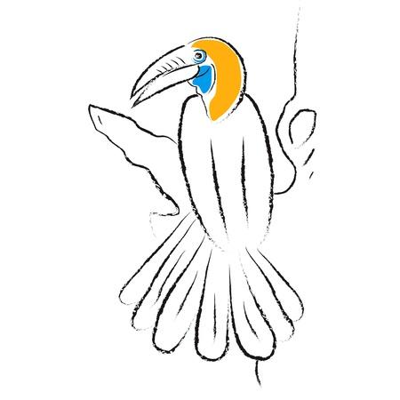 Bird Hornbill Stock Vector - 15781086
