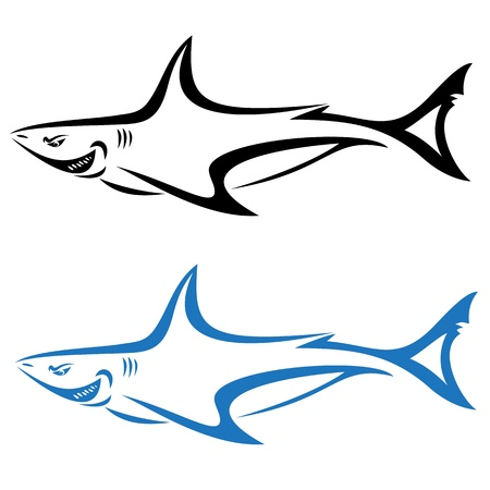 shark teeth: shark