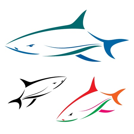 dead fish: shark