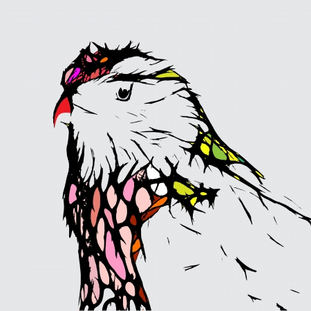 parrot tail: bird