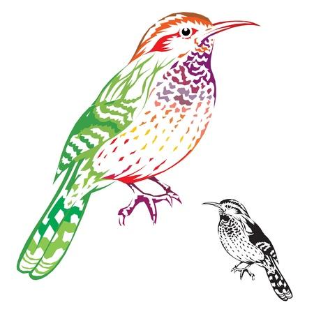 bird Stock Vector - 15910830