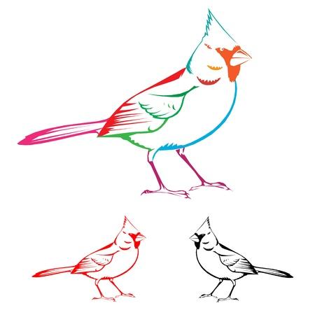 guacamaya caricatura: pájaro Vectores