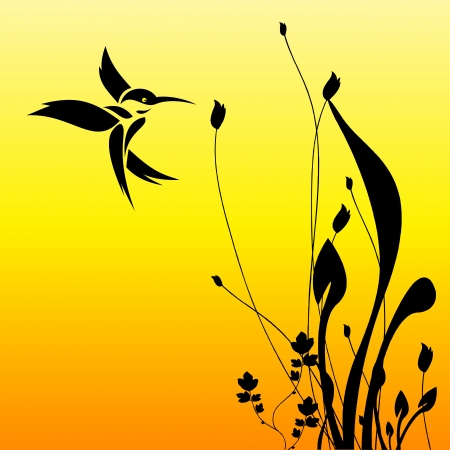 humming bird and flower Vector