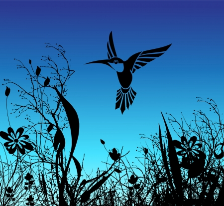 single color image: humming bird and flower