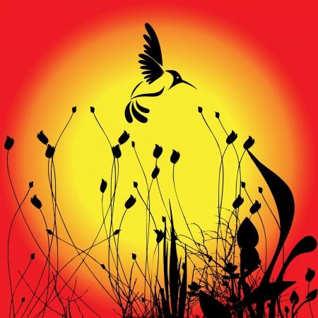 Ronzio di uccelli e fiori Archivio Fotografico - 15969836