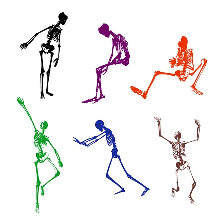 Pose of the skeleton on the white areas Vector