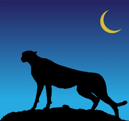 Silhouette of cheetah Stock Vector - 16056636
