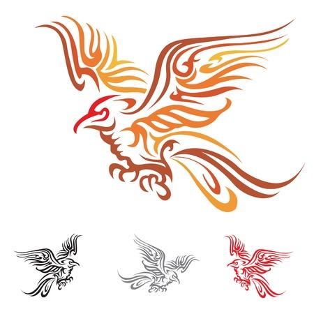 parrot tail:  bird Illustration