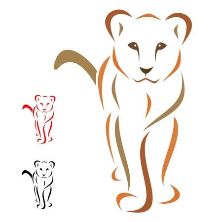 mountain lions: lion Illustration