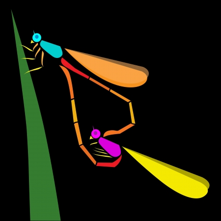 Two colorful dragonfly perched on a leaf Stock Vector - 16158344