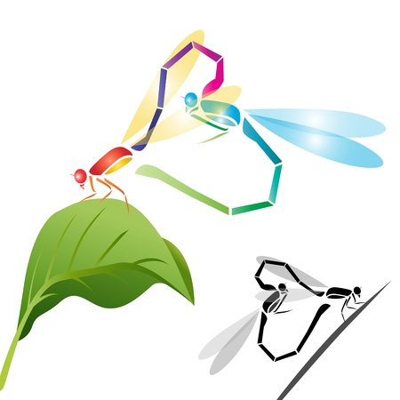 Two dragonfly perched on a leaf Stock Vector - 16158347
