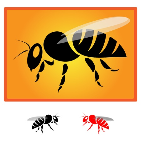 honeybee: black bee silhouette isolated on orange background - Vector image