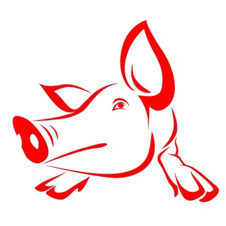 cochinos: Cerdo rojo sobre un fondo blanco - vector