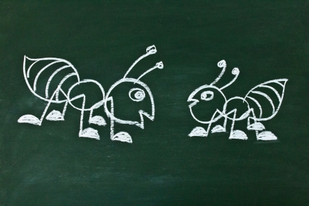 Drawing ant on the blackboard of the school photo