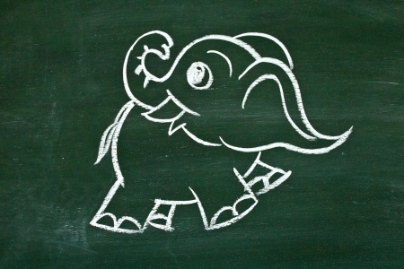 Drawing elephant on the school blackboard photo