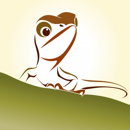 zoological: Lizard  Illustration