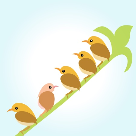 Birds on the branches green  Vector