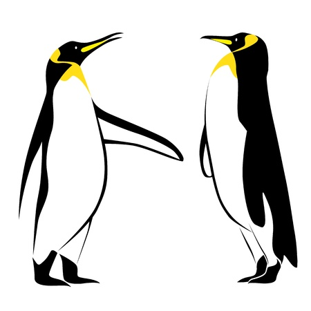 penguins on beach: Vector image of a penguin
