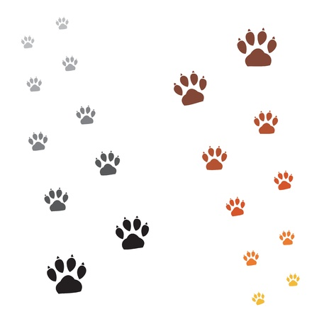 puppies: Illustration animals paws print on a white background